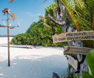 القضايا البيئية (3)