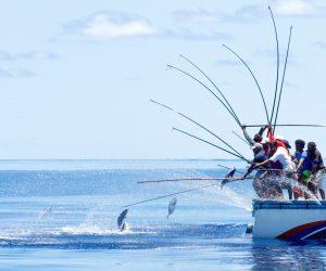 صيد السمك المالديف (5)