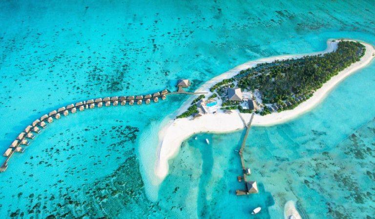 كوكوون المالديف يفوز بجائزة تقييم المسافر الحجز.كوم